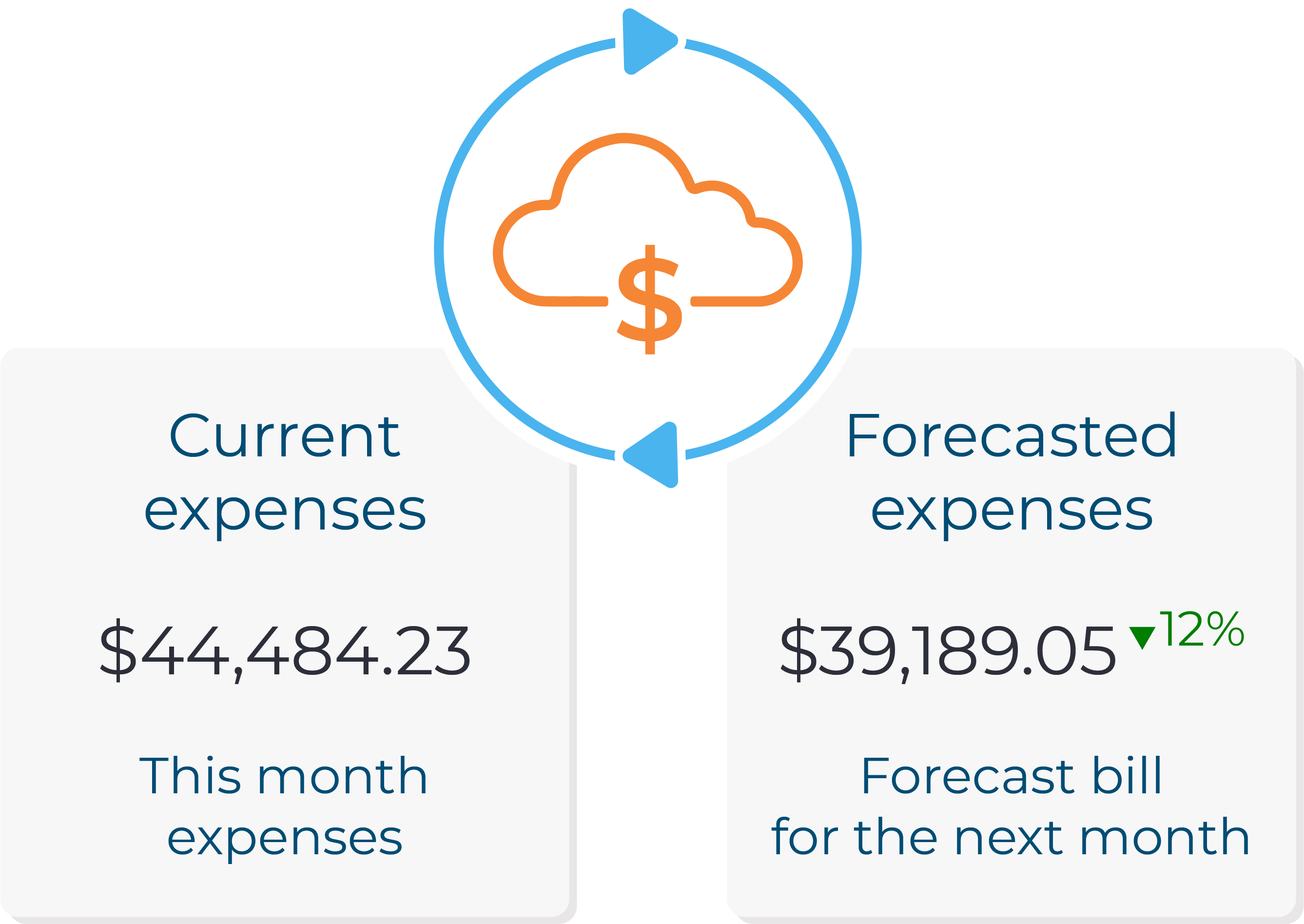 Forecasted expenses for cloud cost optimization